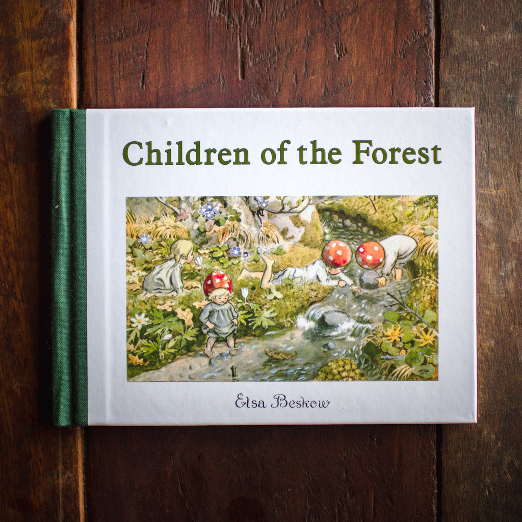 Front cover of the book Children of the Forest by Elsa Beskow, showing the toadstool children playing in a stream.