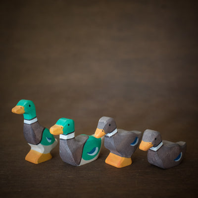 green and brown holztiger wooden ducks