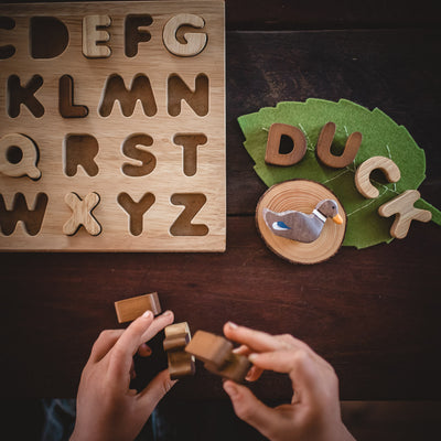 wooden alphabet letters educational toy