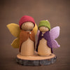 Rainbow Fairy Pair