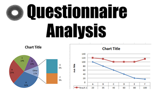 Questionnaire Analysis - 5 to 10 Questions. Maximum of 30 questionnaires analysed