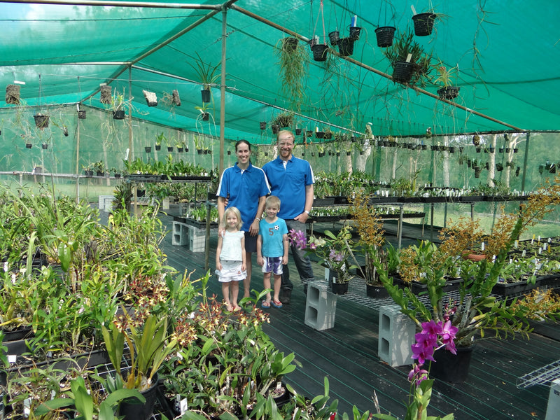 Welcome to Kingfisher Orchid Nursery.