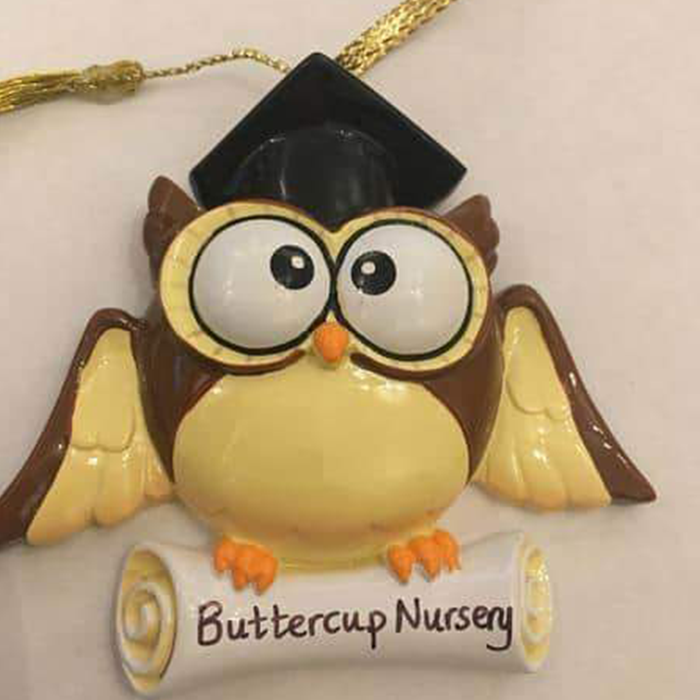 Graduation Owl Decoration.