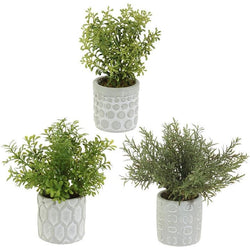 Resin Potted Herbs