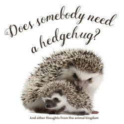 Does Somebody Need a HedgeHug
