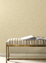 Sprinkle Wallpaper by Antonina Vella Pattern #MR643692