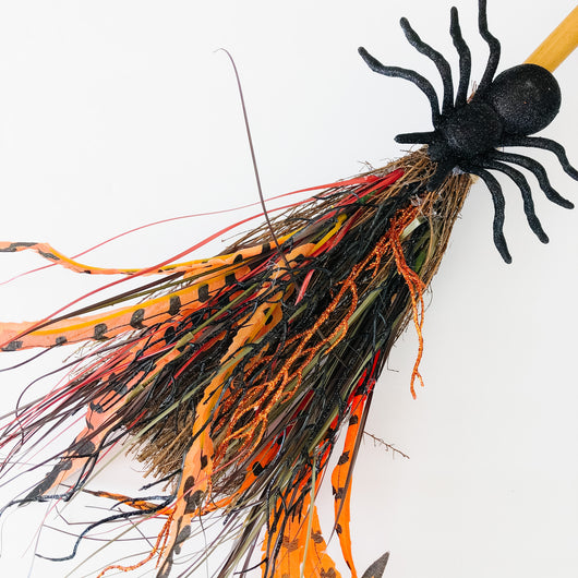 witches broom with spider