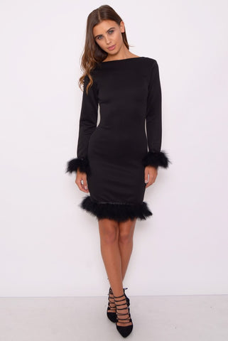 Long Sleeve with Fur Dress