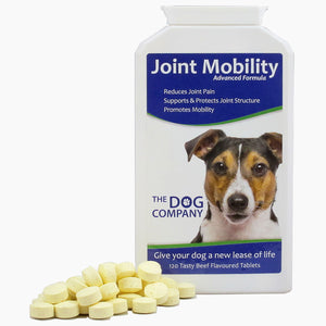Joint Mobility | Pain relief for dogs