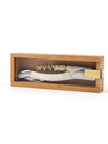 Bone Corkscrew in Beechwood Box