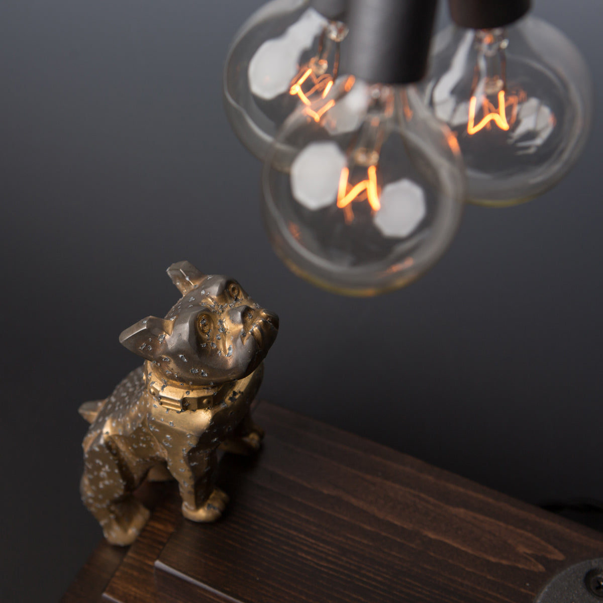 Touch Sensor Lamp -  MACK Bulldog