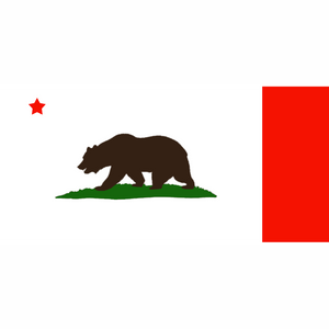 California State Flag Bat
