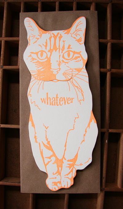 Whatever Cat Card