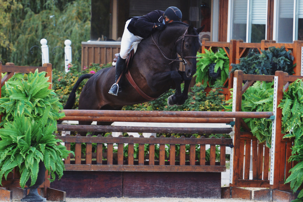 Easy Street wins $20,000 Foxstone USHJA INTERNATIONAL DERBY