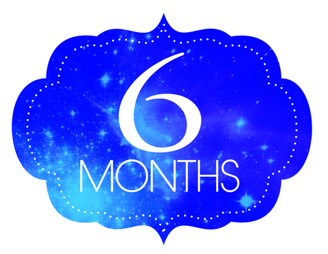 Conscious Crate -  Six month Option