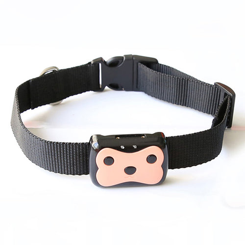 GPS Pet Tracker and collar