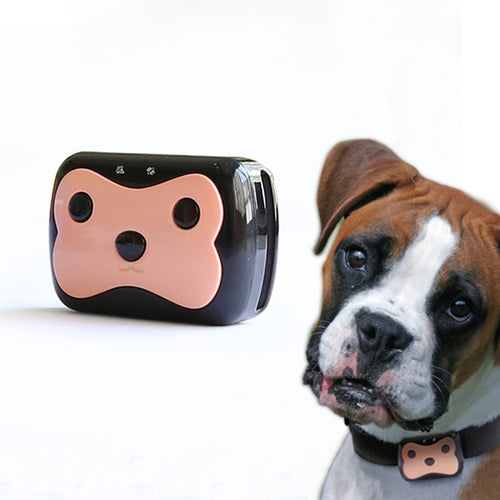 GPS Pet Tracker and dog