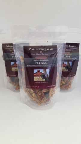Sweet Maple Pecan Snack Mix with Cherries, Apples, and Cinnamon
