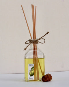 Ginger Lime Reed Diffuser Kit