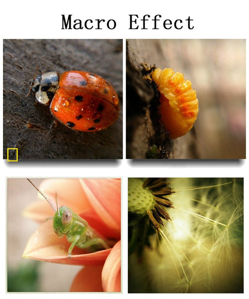Fisheye Lens 3 in 1 Mobile Phone Wide Angle Macro Camera iPhone 7/7plus 6/6s/plus 5s/5 xiaomi huawei lenovo