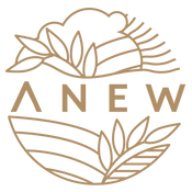 Anew Foods Logo
