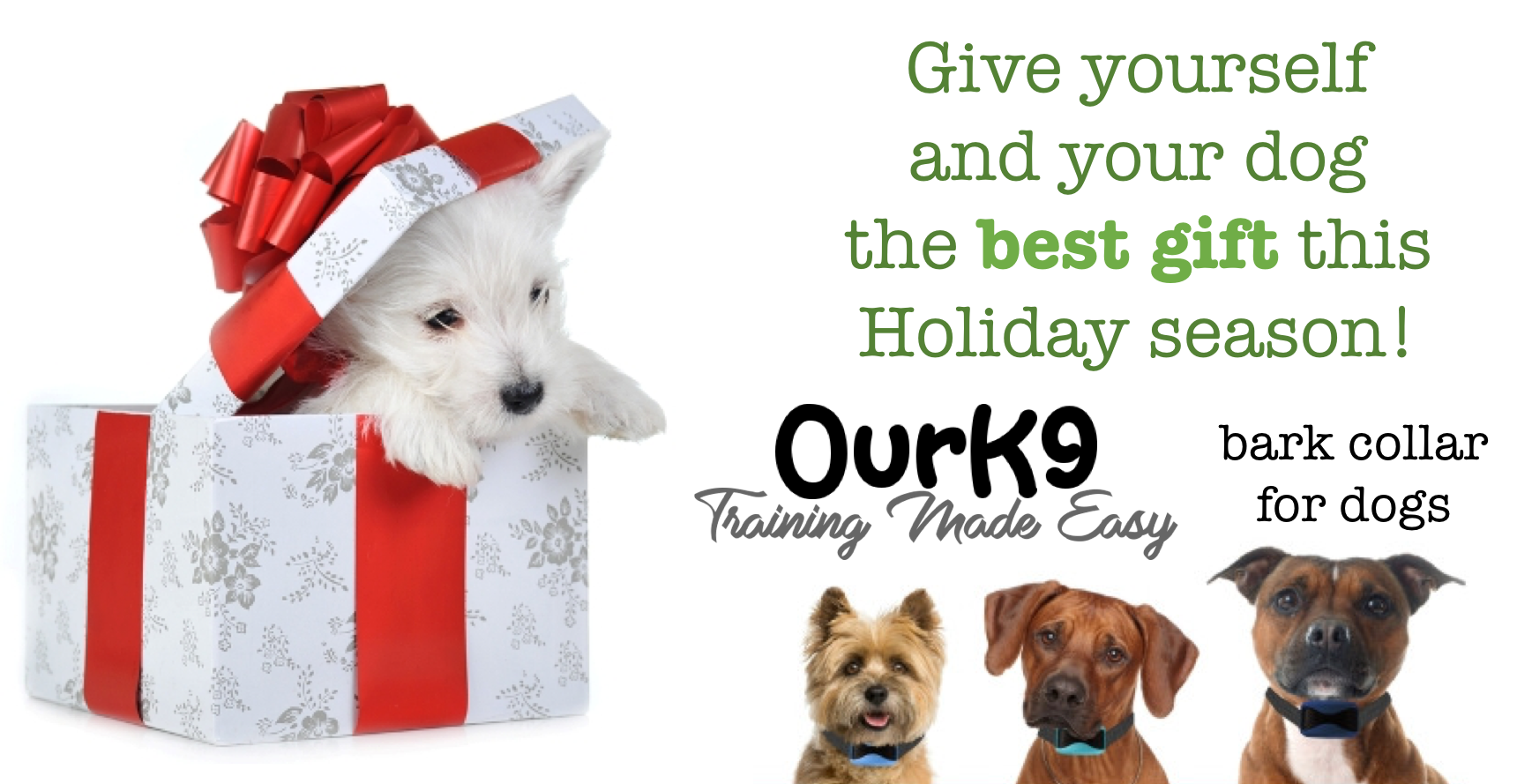 Great Holiday Gift: The Best Dog Bark Collar