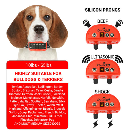 Red Shock Collar for Small Dogs