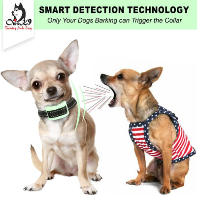 Our K9 - bark collar for small dog - Image 7