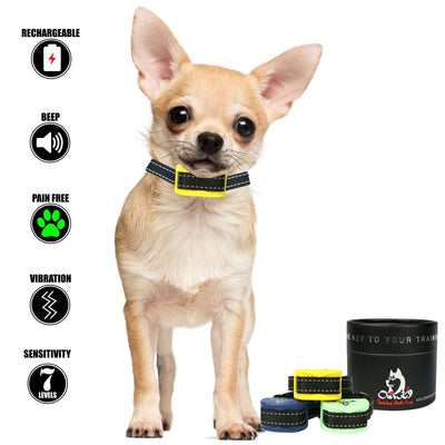 Our K9 - bark collar for small dog - Image 9