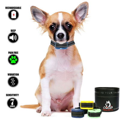 Our K9 - bark collar for small dog - Image 10