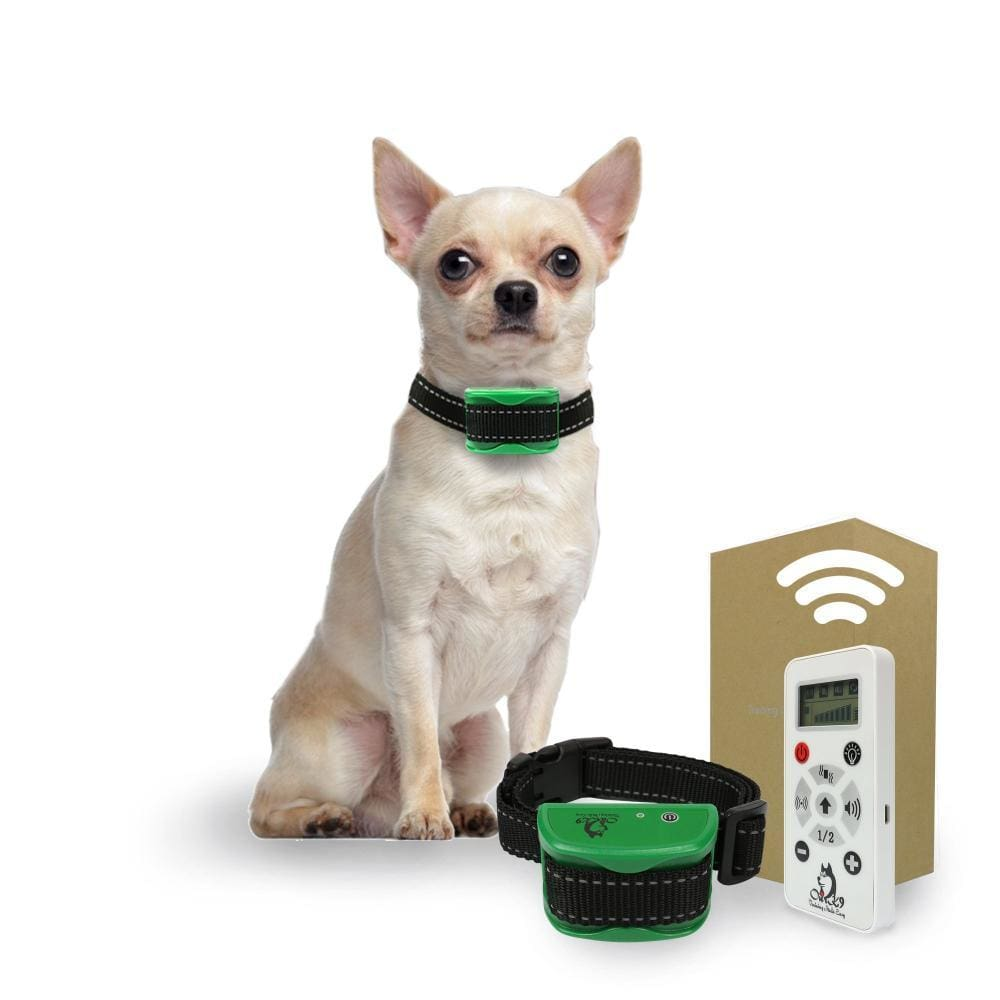Emerald is a Dog Barking Control Device for Very Small - Small Dogs