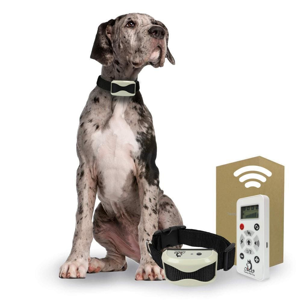 Dog Shock Collar with Remote 800 yd for Medium to Large Dogs