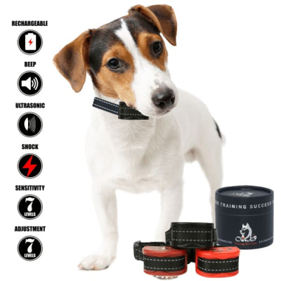 Our K9 - shock collar - Image 9