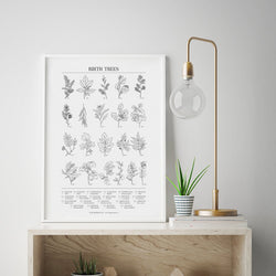 Botanical Birth Trees - 12 Month Poster