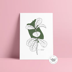 Fiddle leaf fig - Abstract