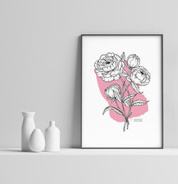 Peony Bunch Abstract - Blush