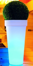 LED Planter with Remote