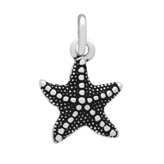 products/sterling-silver-starfish-charm-pendant-16.jpg