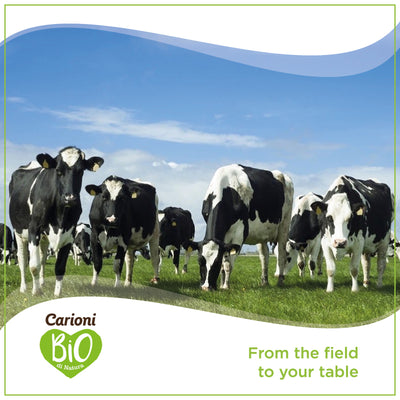Discover our new farm: Carioni
