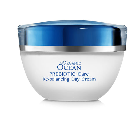 Re-balancing Day Cream