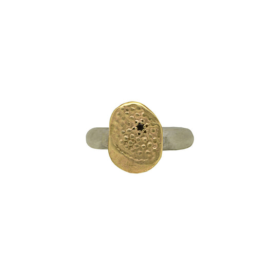 Textured 9 CT Gold Ring with Silver Sterling Band