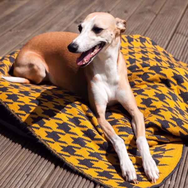 Houndstooth Blanket - English Mustard & Anthracite
