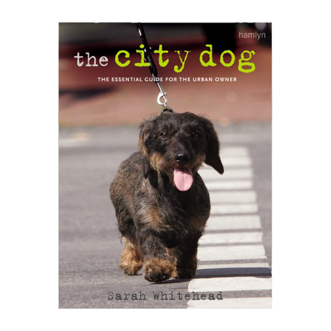 The City Dog Book (Paperback)