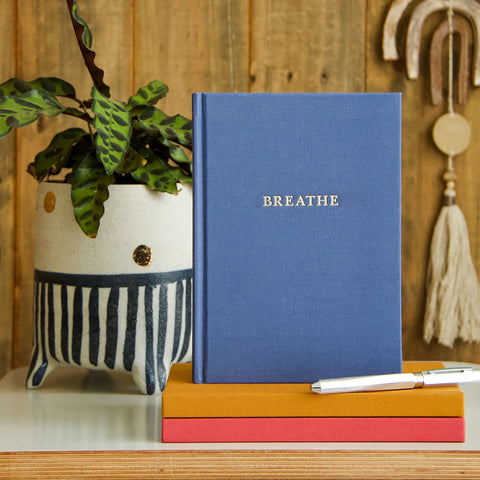 WRITE AT HOME JOURNALS