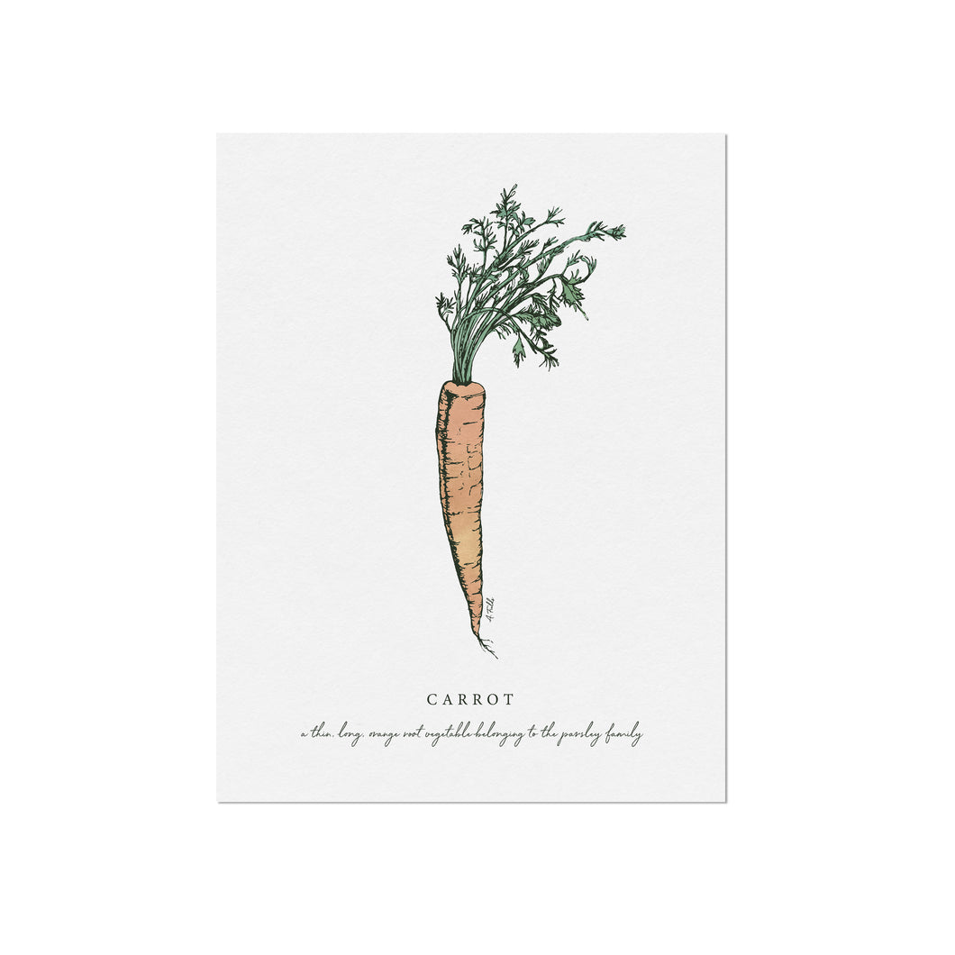 Carrot Veggie Illustration