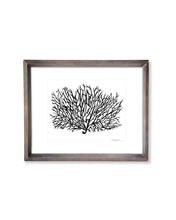 Coral Sea Fan | Block Print