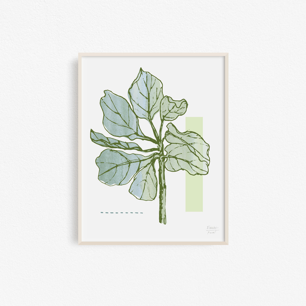 Fiddle Leaf Fig Tree - Art Print