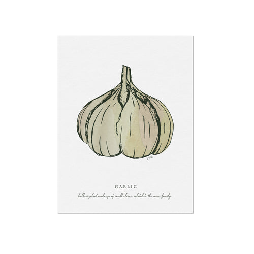 Garlic Veggie Illustration