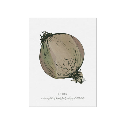 Onion Veggie Illustration