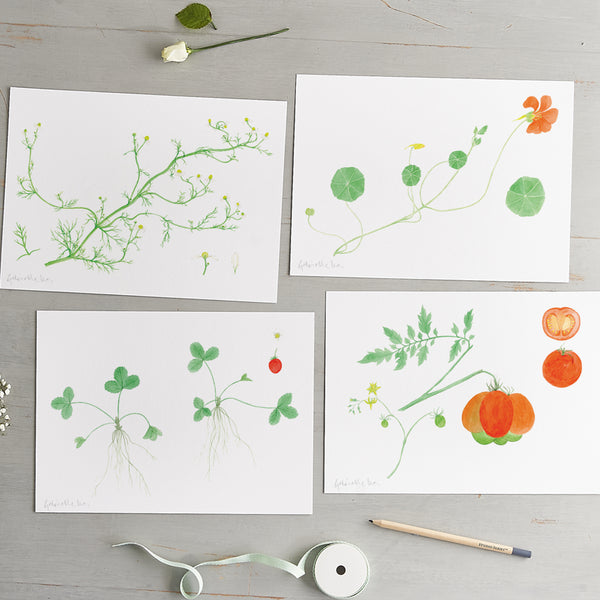 'Allotment Set' Art Prints Gift Pack